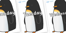 Days of the Week on Penguin to Support Teaching on Lost and Found