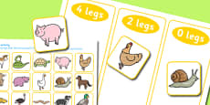 Animal Leg Sorting Activity