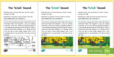 * NEW * NI Linguistic Phonics Stage 5 and 6 Phase 3b, 'h, wh' Sound Activity Sheet