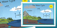 The Water Cycle Large Display Poster