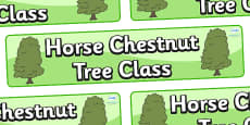 Horse Chestnut Tree Themed Classroom Display Banner