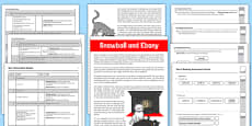 Year 4 Reading Assessment: Fiction Term 2