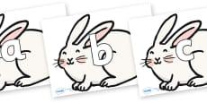 Phoneme Set on Chinese New Year Rabbit