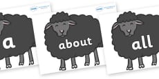 100 High Frequency Words on Baa Baa Black Sheep