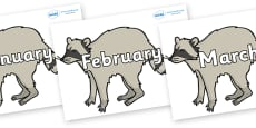 Months of the Year on Raccoons