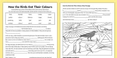 Aborginal Dreamtime How the Birds Got Their Colours Differentiated Activity Sheets
