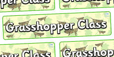 Grasshopper Themed Classroom Display Banner