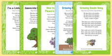 Plants and Growth Themed Songs and Rhymes Resource Pack
