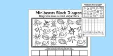 Minibeasts Block Diagram Activity Sheet Romanian Translation