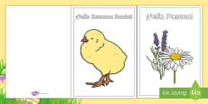 * NEW * Easter Card Templates - Spanish