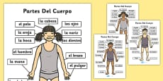 Parts of the Body A4 Spanish