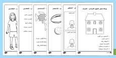 أوراق عمل الفهم القرائي