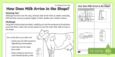 How Does Milk Arrive in the Shops? Activity Sheet