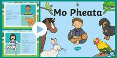 Mo Pheata PowerPoint Gaeilge