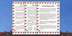 Remembrance Day Information and Fill in the Blank Activity Sheets