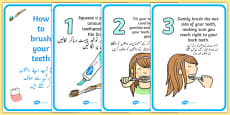 How To Brush Your Teeth Posters Urdu Translation
