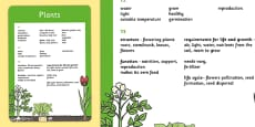 Year 1 to Year 3 Plants Scientific Vocabulary Progression Poster