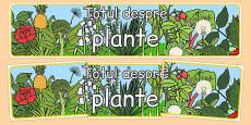 Totul despre plante - Banner