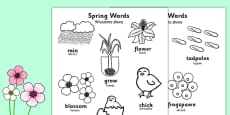 Spring Words Colouring Sheets Polish Translation