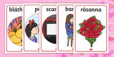 Valentine's Day Display Posters Gaeilge