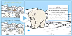 Winter Arctic Animals Habitat PowerPoint Arabic