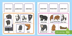 Bears Matching Cards and Boards Game
