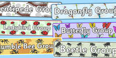Minibeast Group Signs