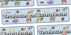 Vertebrates And Invertebrates Display Banner