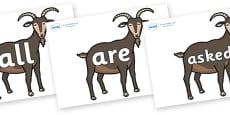 Tricky Words on Big Billy Goats