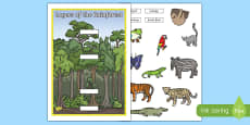 Layers of the Rainforest Cut and Stick Activity