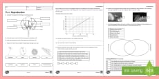 KS3 Plant Reproduction Homework Activity Sheet