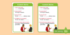 ROI Irish Language Conversation Cards Flashcards Gaeilge