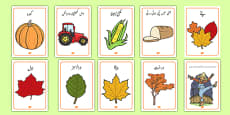 Autumn Display Posters Urdu