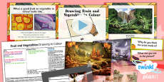 PlanIt - Art LKS2 - Fruit and Vegetables Lesson 3: Drawing Fruit and Vegetables in Colour Pack