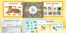 PlanIt - Science Year 1 - Animals Including Humans Lesson 5: Animal Bodies Lesson Pack