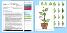 Beanstalk Phonics EYFS Adult Input Plan and Resource Pack