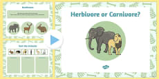 Living Things and their Habitats Herbivore or Carnivore Lesson Teaching Pack Flipchart