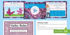 Recognising Haikus Lesson Teaching Lesson Pack