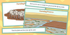 Ancient Sumer Farming Process Ordering Activity