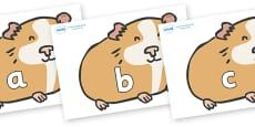 Phase 2 Phonemes on Guinea Pigs
