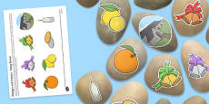 Oranges and Lemons Story Stones Image Cut-Outs