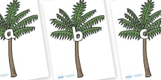 Phase 2 Phonemes on Palm Trees