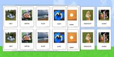 Fotografii de vară - Joc potrivire de cartonașe