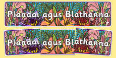 Plants and Flowers IPC Display Banner Gaeilge