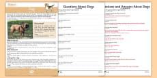Dogs Reading Comprehension Mandarin Chinese Translation