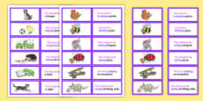 SVO Picture Description Cards Unusual Sentences Set 2