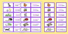 SVO Picture Description Cards Unusual Sentences Set 2