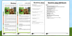 Minibeasts Differentiated Reading Comprehension Activity Mandarin Chinese Translation