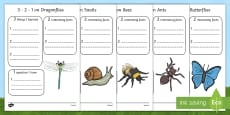 Minibeast Writing Frames