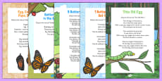 Butterfly Life Cycle Songs and Rhymes Resource Pack